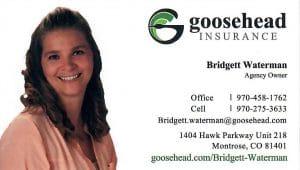 Goosehead Isurance-Bridgett Waterman Agency
